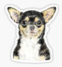 Chihuahua - ever popular! Sticker