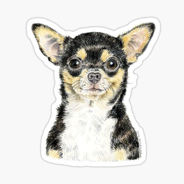 Chihuahua - ¡siempre popular! Pegatina