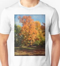 Changing Colors Unisex T-Shirt