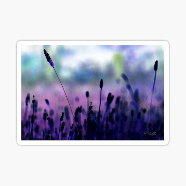 If I had a purple crayon ... Sticker