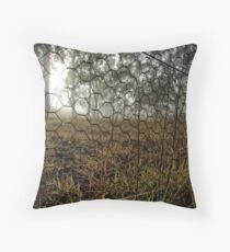 Frosty and Foggy Morning at Macgregor Nature Reserve (ACT/Australia) (10) Throw Pillow