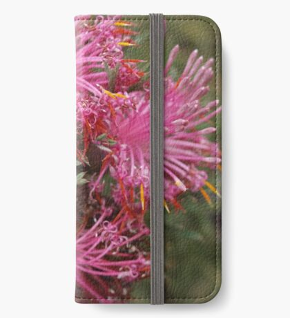 Isopogon formosus iPhone Wallet
