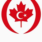 Turkish Canadian Multinational Patriot Flag Series by Carbon-Fibre Media