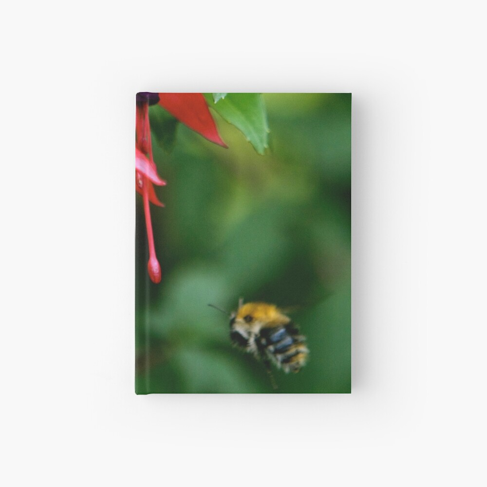 Wild Fuchsia at Loch Na Fooey (tall) Hardcover Journal