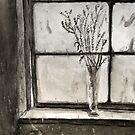 Silence by MrLone