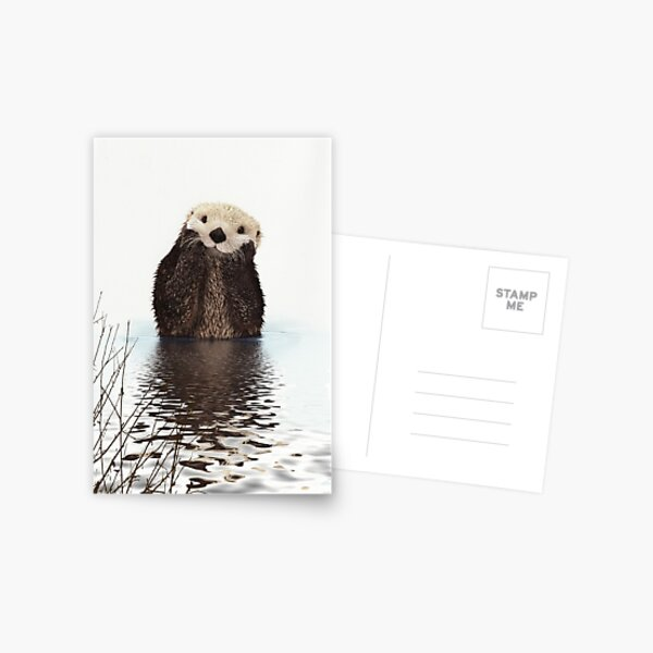 Adorable Smiling Otter in Lake Postcard