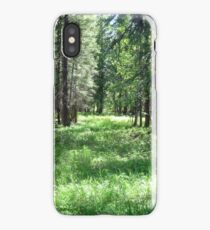 Clearing iPhone Case