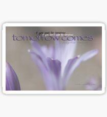 Tomorrow Comes © Vicki Ferrari Sticker