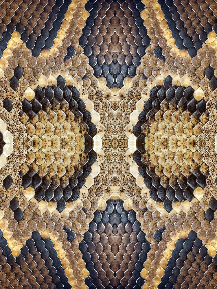 Brown Snake Skin by bykondel