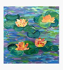 Waterilies - Year 6 2016 Photographic Print