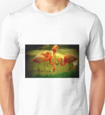 Carribbean Flamingos Unisex T-Shirt