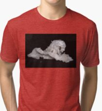 fortune horse Tri-blend T-Shirt