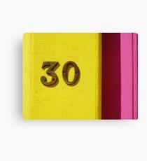 30 Canvas Print