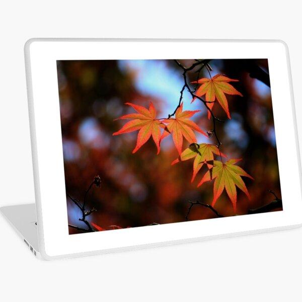 Leaf dance Laptop Skin