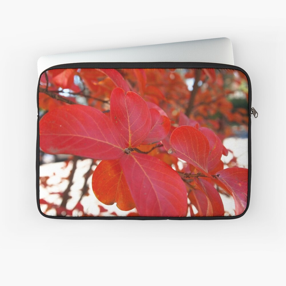 Red Leaves in Autumn 2 Laptop Sleeve