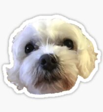 My Dog Sticker