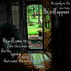 Spring Rain  by Chlese  Jiles
