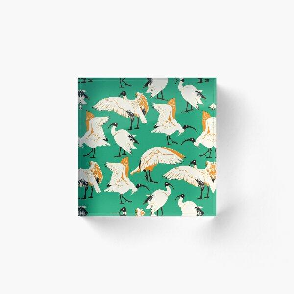 Ibis Buddies - Green Acrylic Block