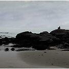 Solitude at Goose Rocks by Wayne King