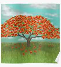 Flamboyan Tree Posters Redbubble