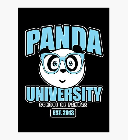Panda University - Blue 2 Photographic Print