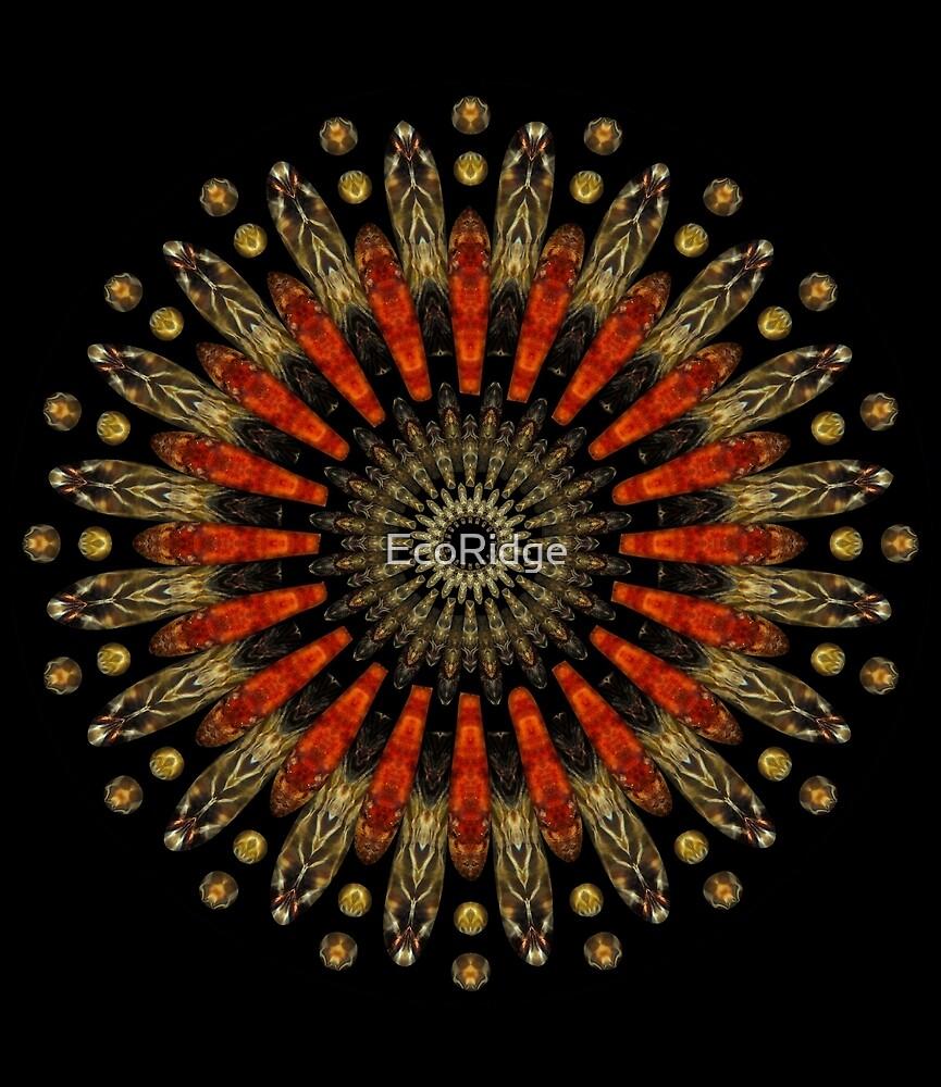 «Edison Mandala» de EcoRidge