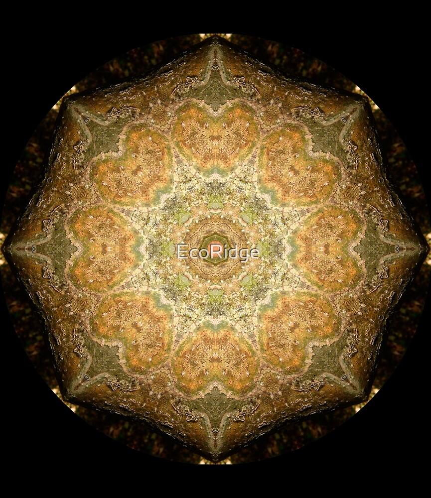 «Merry Meet Mandala» de EcoRidge