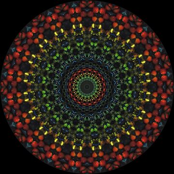 Lit Up Mandala de EcoRidge