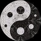 «Wet n Dry Mandala» de EcoRidge