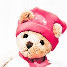 Teddy bear by wendywoo1972