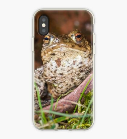 Common Toad iPhone Case