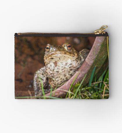 Common Toad Studio Pouch