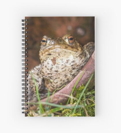 Common Toad Spiral Notebook