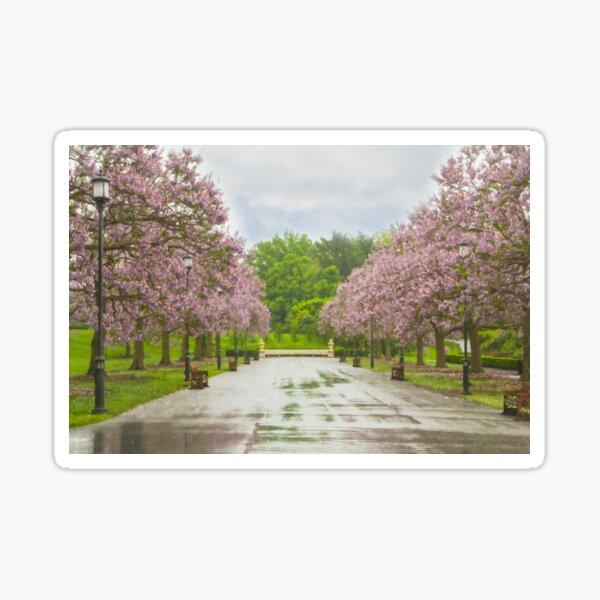 Longwood's Grand Allee Sticker