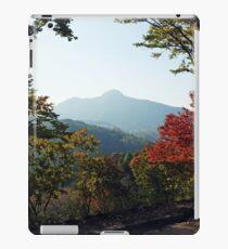 Rural Korea iPad Case/Skin