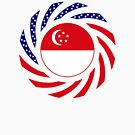 Singapore American Multinational Patriot Flag Series by Carbon-Fibre Media