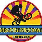 MOUNTAIN BIKE BRECKENRIDGE COLORADO BIKING MOUNTAINS by MyHandmadeSigns