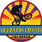 MOUNTAIN BIKE CRESTED BUTTE COLORADO BIKING MOUNTAINS by MyHandmadeSigns