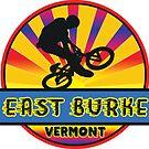 MOUNTAIN BIKE EAST BURKE VERMONT BIKING MOUNTAINS by MyHandmadeSigns