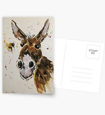 Funny Donkey and Bumble bee Postcards