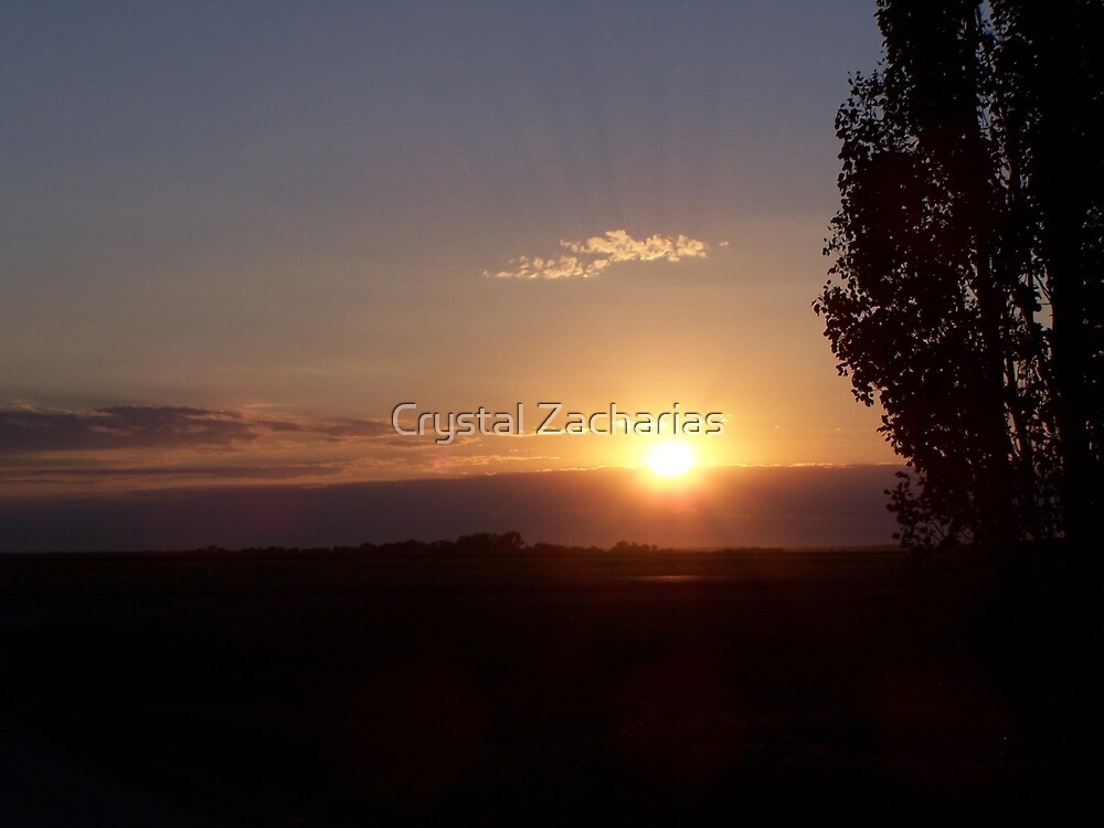 Another Day Gone by Crystal Zacharias