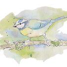 Blue tit watercolour by pokegirl93