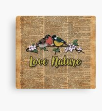 Small birds on tree branch Vintage Dictionary Art Love Nature Canvas Print