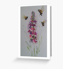Bumble bees among foxglove Greeting Card