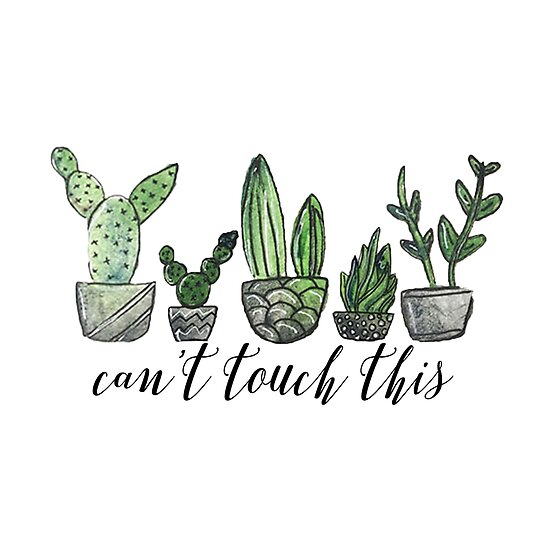 Can't Touch This by Emily Lind