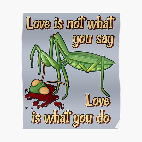 Love Is Not What You Say, Love Is What You Do Poster
