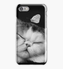Cutie Cat's Sweet Dream, pet, black white iPhone Case/Skin