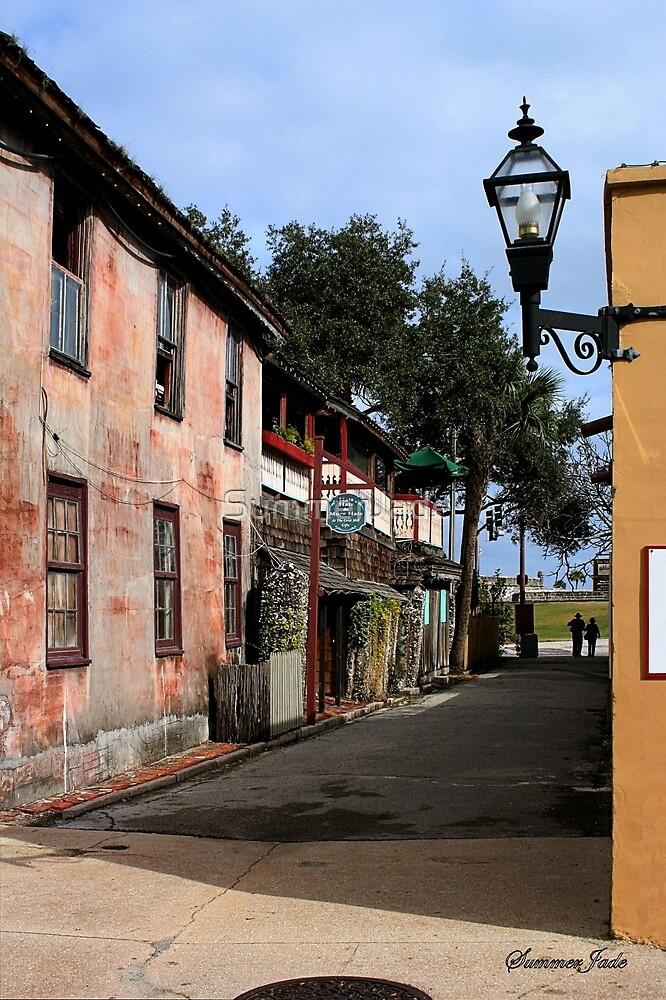 Fort Alley ~ A Very Old Street by SummerJade