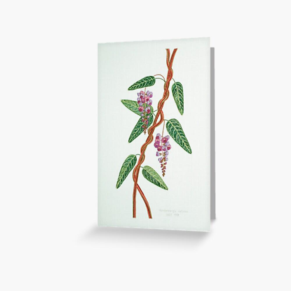 Native Lilac, Hardenbergia violacea  1998 Greeting Card