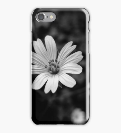 FLora Noir IV - White times 4 iPhone Case/Skin